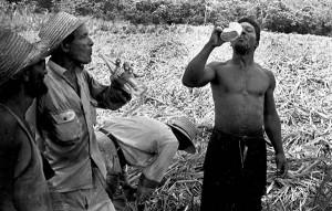 Zafra del 70, del libro La otra Cuba, 1968-88. Cortesía Grethell Morel